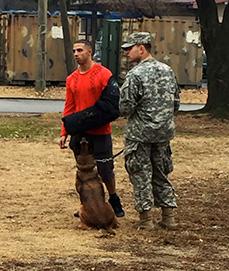 Victor - dog training expert